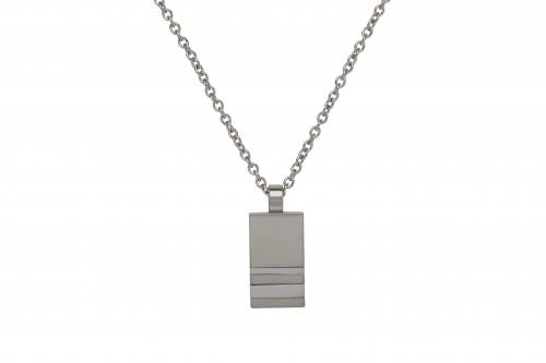 Stainless Steel Pendant & Chain 20 Inch