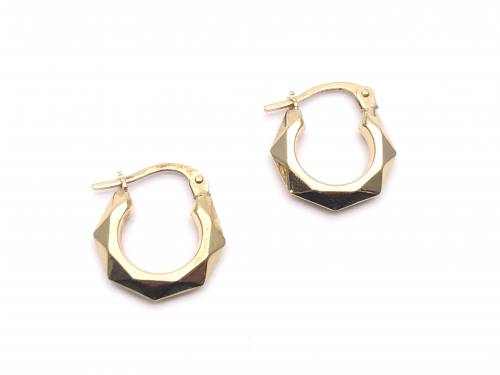9ct Yellow Gold Facetted Hoop Earrings